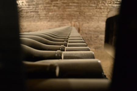 D.R.C. lying in cellar